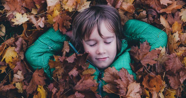 Die ersten österreichischen Herbstferien – Urlaub im Desaster?
